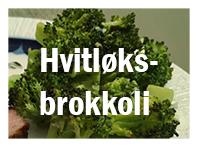 Ovnsbakt brokkoli med hvitløk